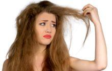 Шампуни для сухих волос, правила выбора и рекомендуемые торговые марки